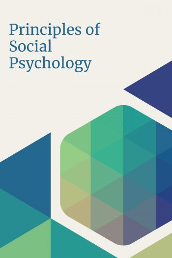 Cover image for Principles of Social Psychology