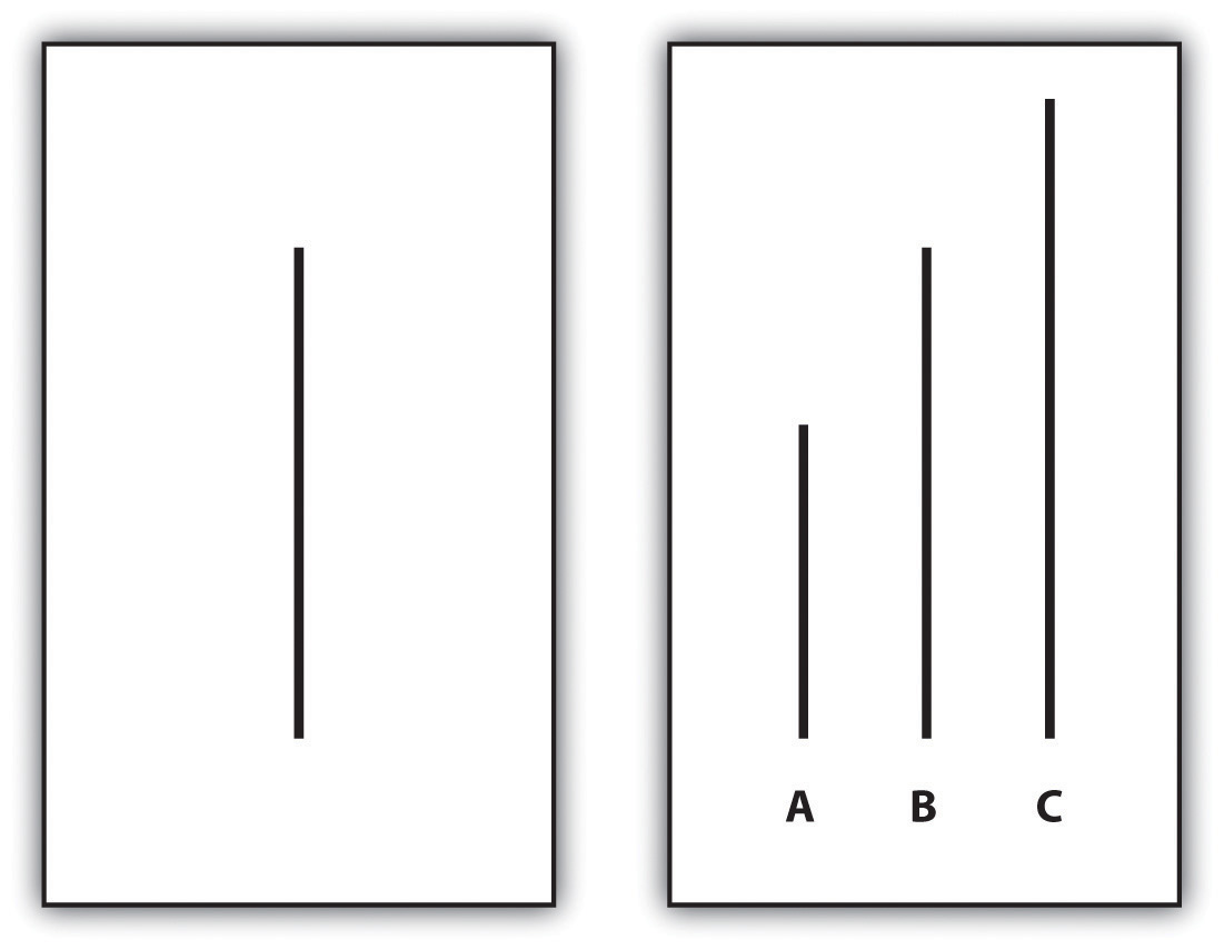 Examples of Cards Used in Asch's Experiment