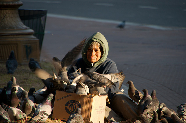 An old woman feeding the pigeons