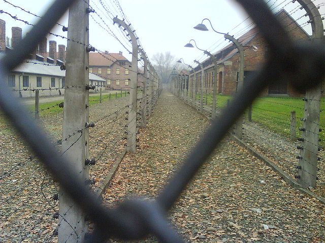 The fence at Auschwitz