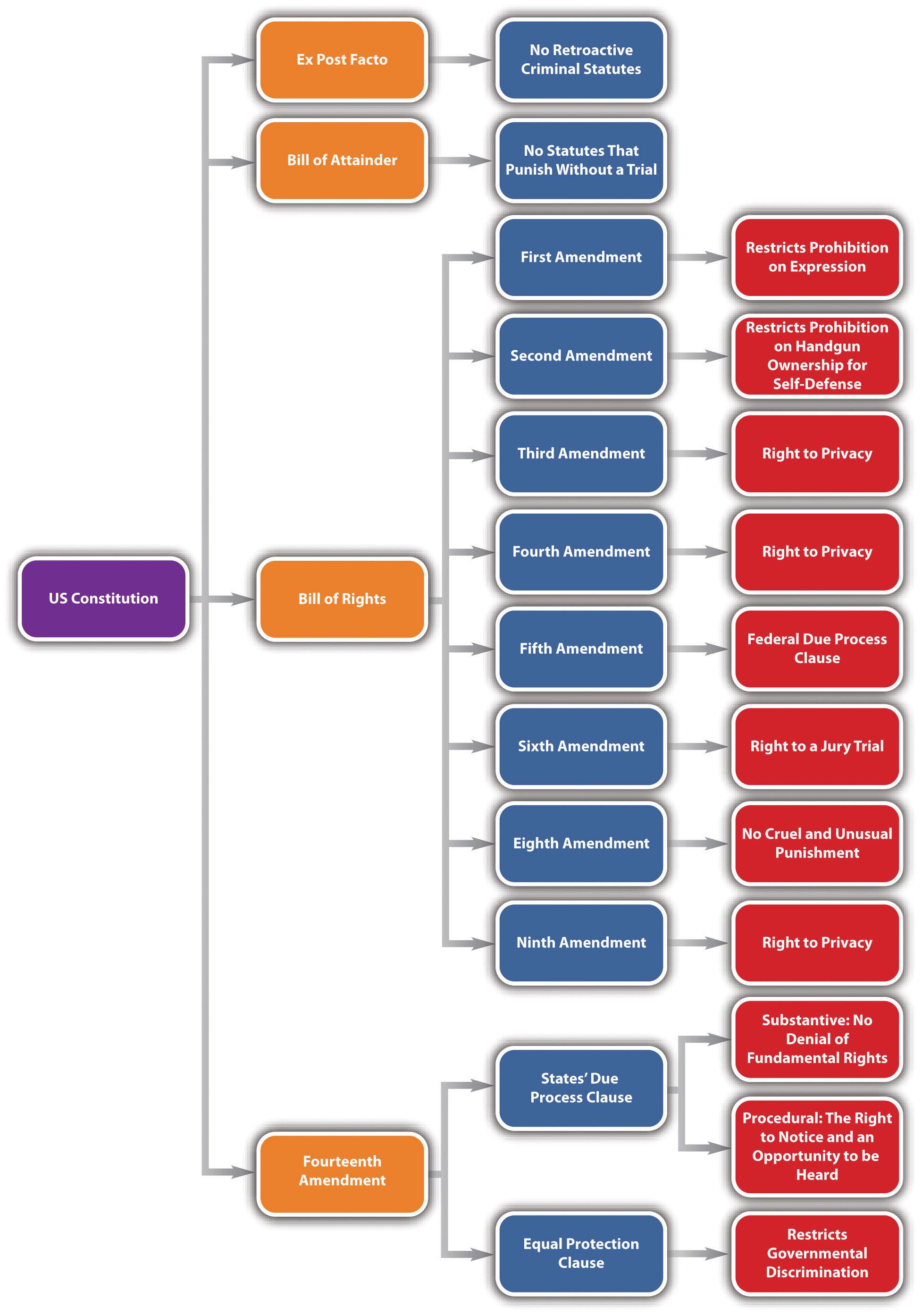 Diagram of Constitutional Defenses