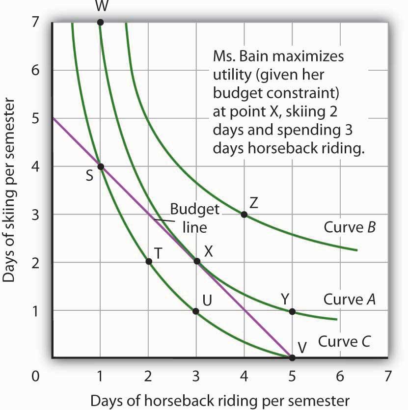 The Utility-Maximizing Solution