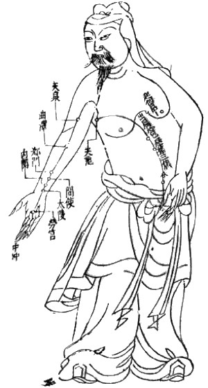 An illustration of an acupuncture chart