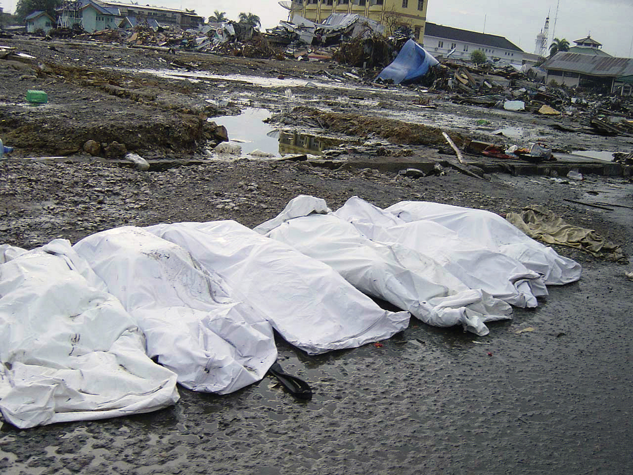 Covered bodies on the beach from a devastating Tsunami