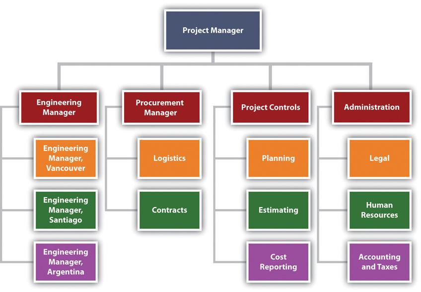 Organization for Major International Project