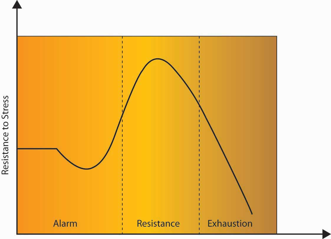 Resistance to stress has three stages: alarm, resistance, and exhaustion