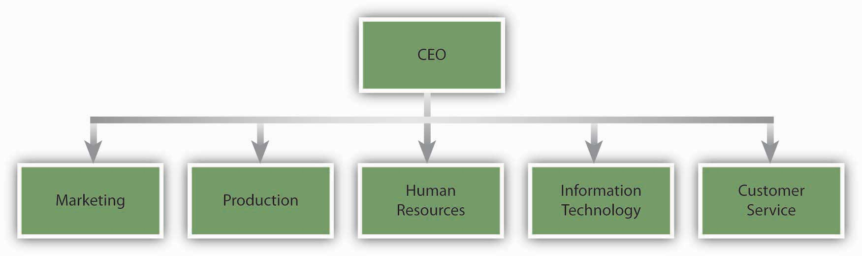 An Example of a Pharmaceutical Company With Functional Departments: Marketing, Production, Human Resources, Information Technology, and Customer Service