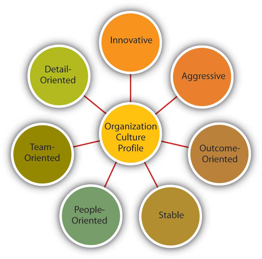 Dimensions of Organizational Culture Profile: Detail-oriented, innovative, aggressive, outcome-oriented, stable, people-oriented, and team-oriented