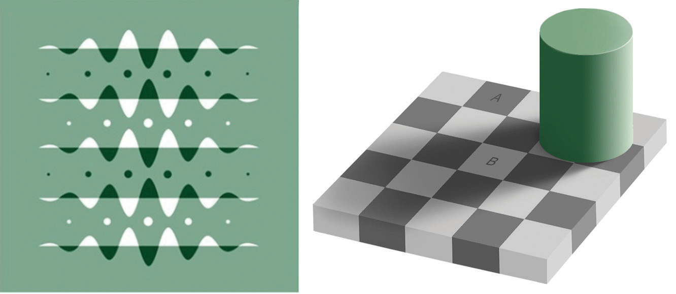 Optical Illusions as a Result of Brightness Constancy (Left) and Color Constancy (Right)