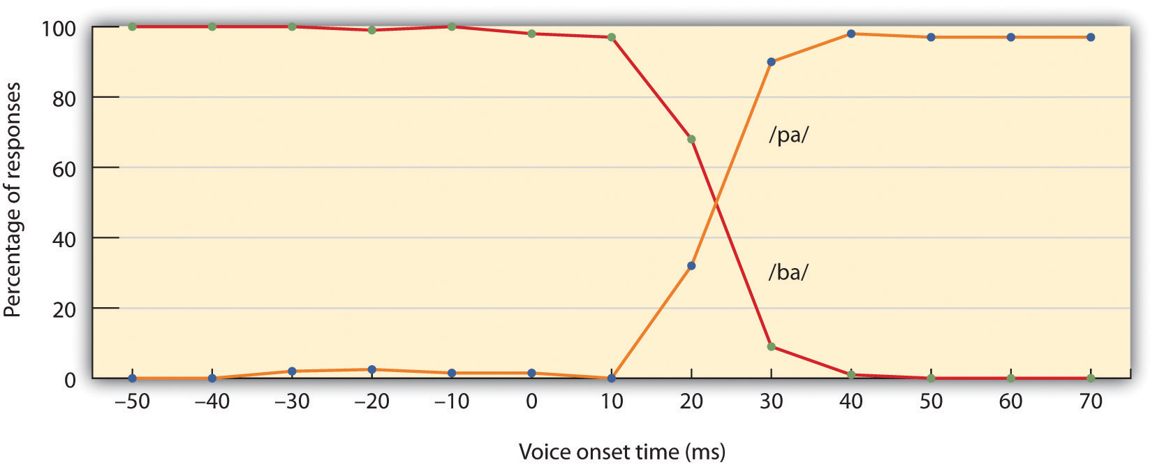 When adults hear speech sounds that gradually change from one phoneme to another, they do not hear the continuous change; rather, they hear one sound until they suddenly begin hearing the other. In this case, the change is from /ba/ to /pa/.