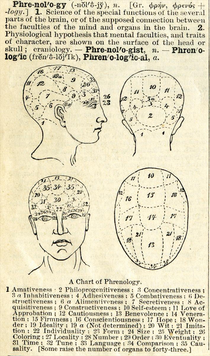 Chart of Phrenology
