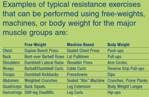 Table with exercises for particular areas of the body using free weights, machines, or body weight.