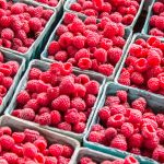 Picture of small cartons of fresh raspberries.