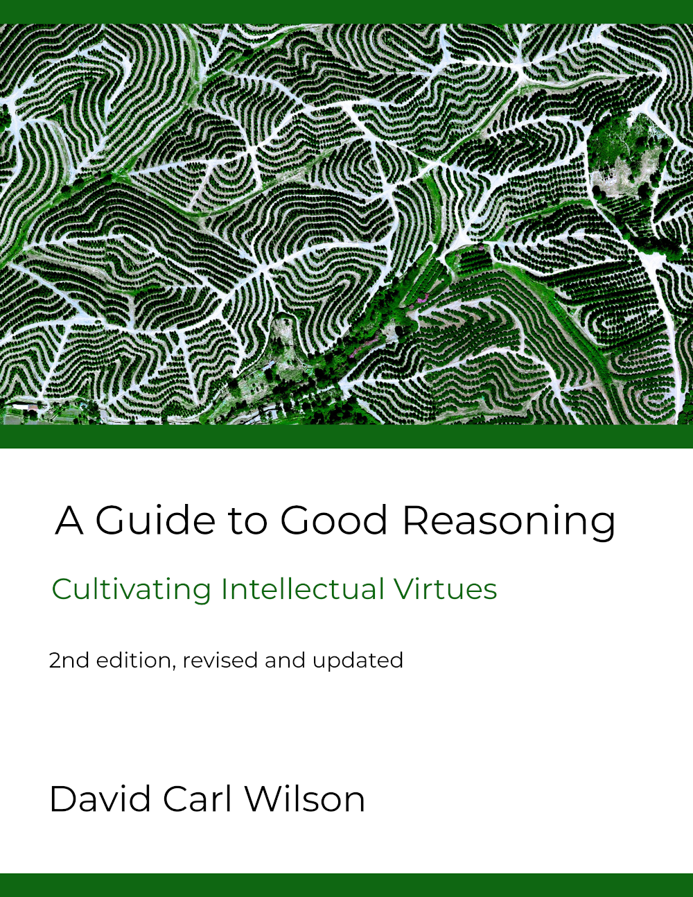 Cover image for A Guide to Good Reasoning: Cultivating Intellectual Virtues