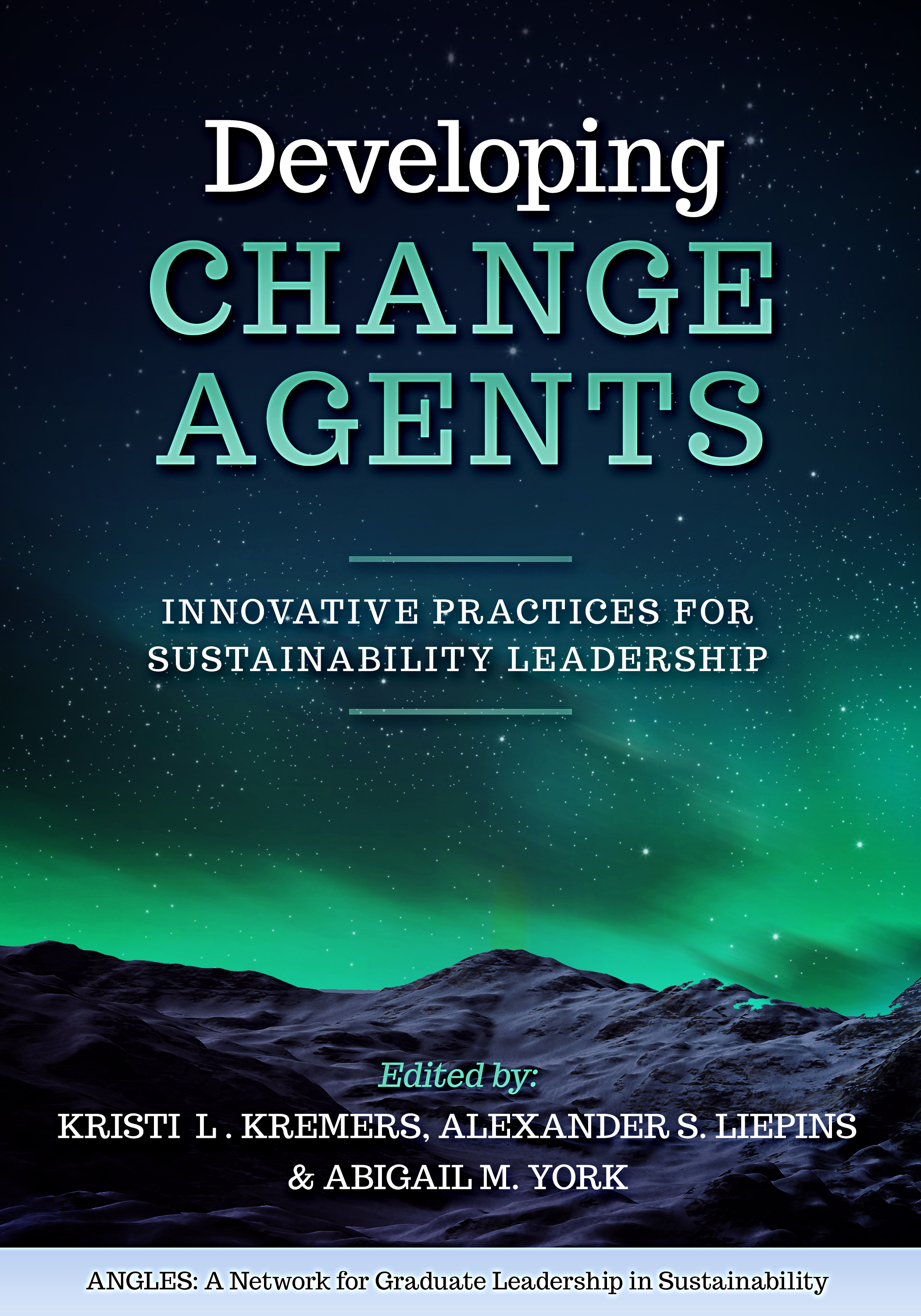 Cover image for Developing Change Agents