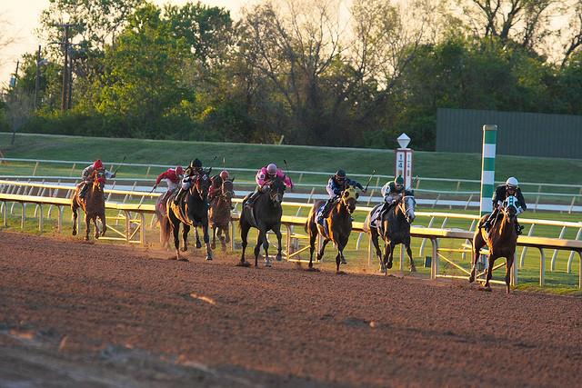 Horse racing at Lone Star Park in Grand Prairie, Texas