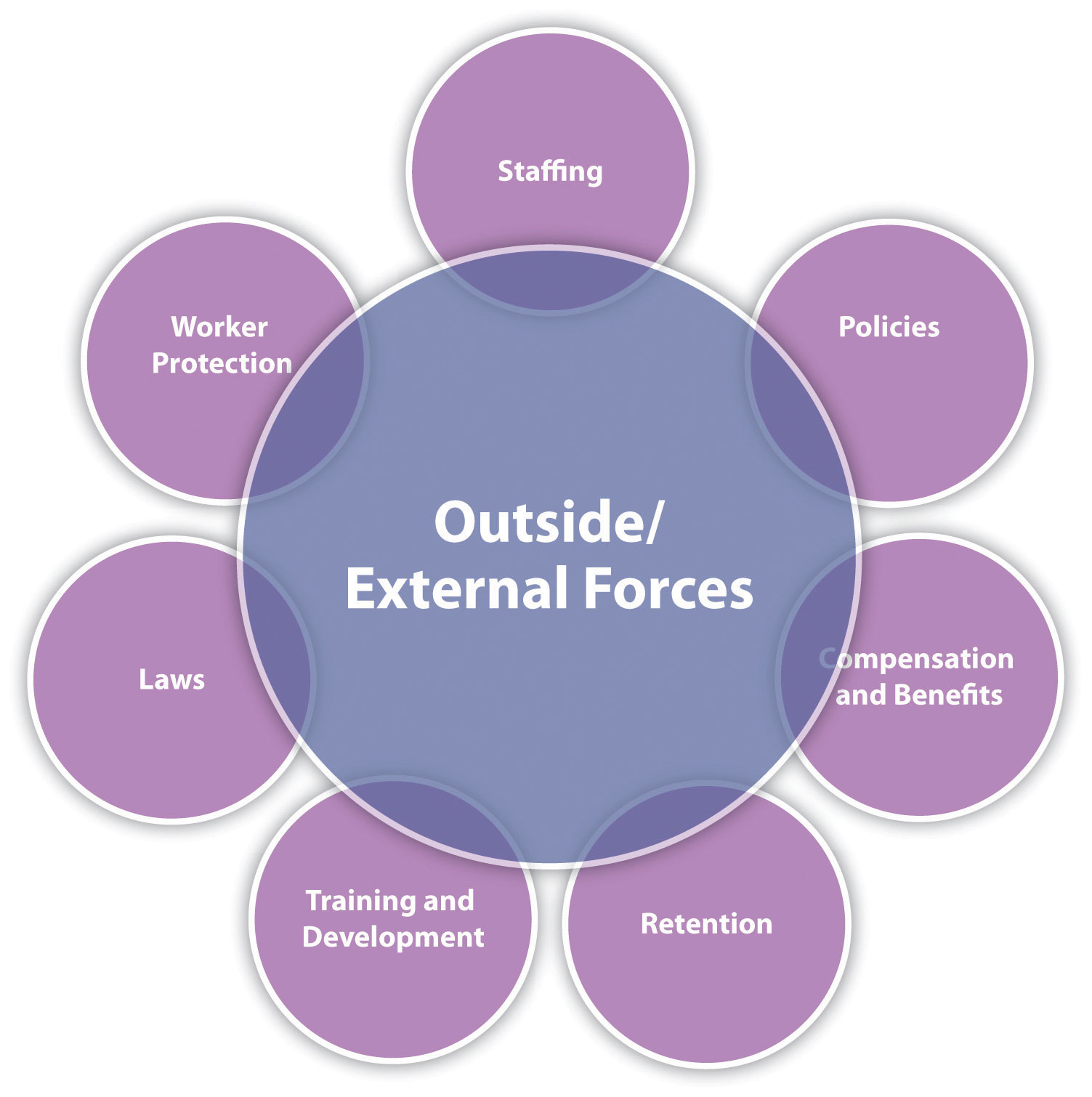 Most professionals agree that there are seven main tasks HRM professionals perform. All these need to be considered in relation to external and outside forces.