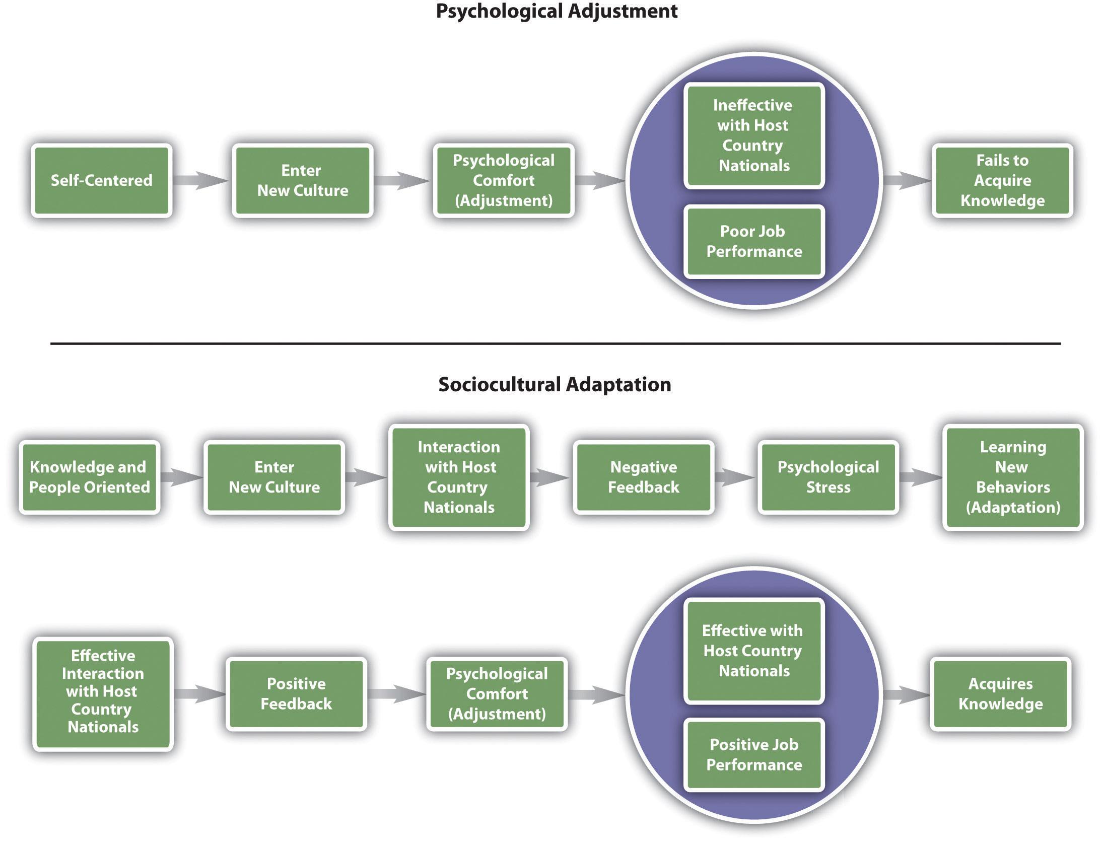 Blakeney's Model of Psychological versus Sociocultural Adaption