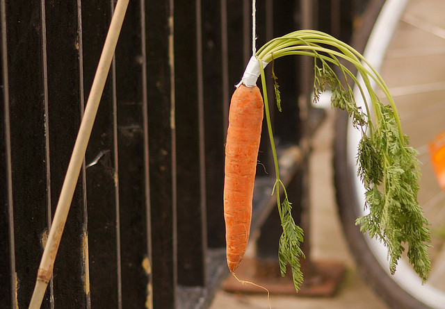 A carrot tied to the end of a stick