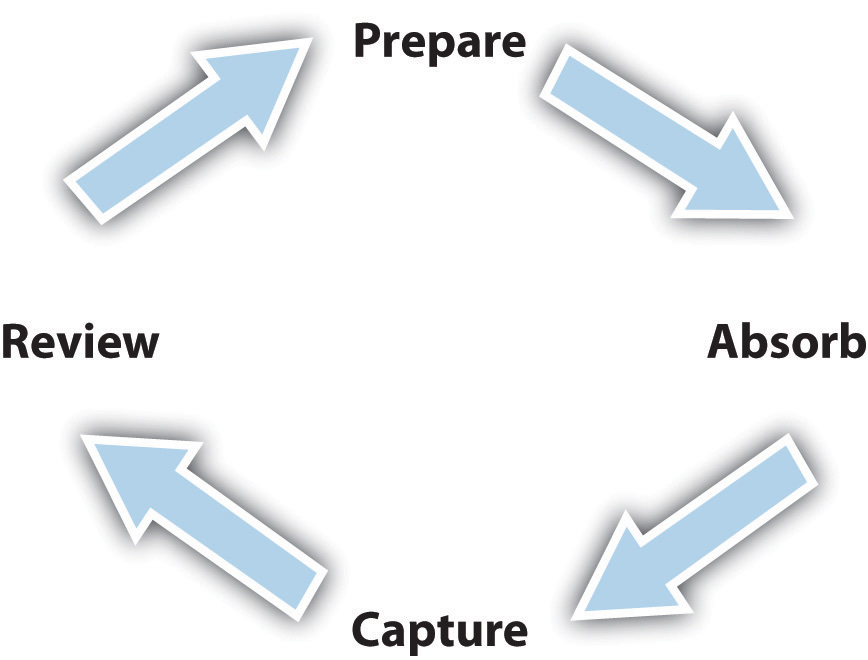 The Learning Cycle (Prepare -> Absorb -> Capture -> Review ->)