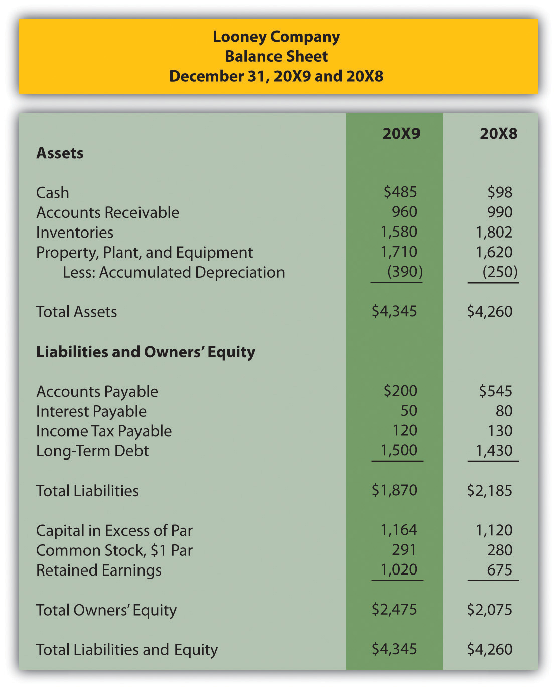 Looney Company balance sheet December 31, 20X9 and 20X8